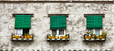 Windows with flowerboxes - p1445m2150464 by Eugenia Kyriakopoulou
