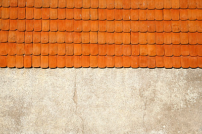 Roofing tile s - p5500205 by Thomas Franz