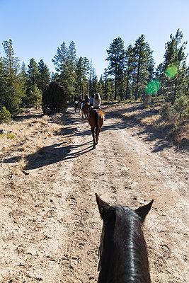 Horse hiking - p756m1584541 by Bénédicte Lassalle
