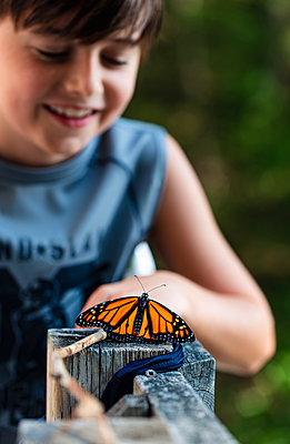 Young boy looking at a monarch butterfly resting on a deck railing. - p1166m2208001 by Cavan Images