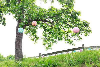 Lampions bei Tag - p606m1573552 von Iris Friedrich