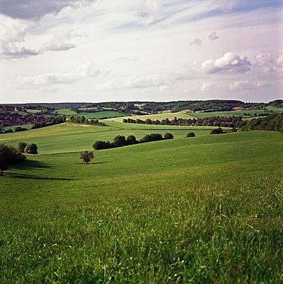 Fruchtbare Hügel - p9110511 von Benjamin Roulet