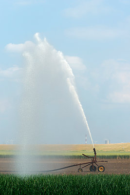Irrigation on an onion field - p1132m925473 by Mischa Keijser