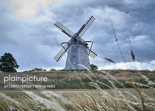 Windmühle und Kornfeld - p1124m1165534 von Willing-Holtz