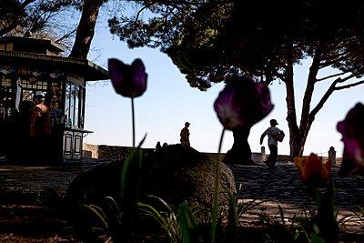 The esplanade - p1307m1225604 by Agnès Deschamps
