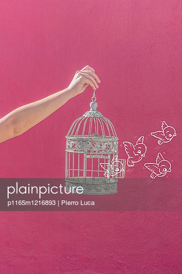 Imaginäre Vögel verlassen einen Vogelbauer - p1165m1216893 von Pierro Luca