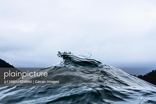 p1166m1524944 von Cavan Images