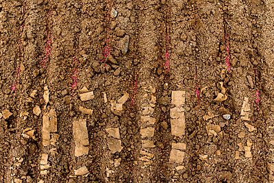 Sowing - p915m2022182 by Michel Monteaux