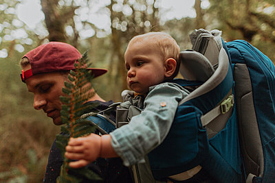 Hiker with baby exploring forest, Queenstown, Canterbury, New Zealand - p924m2098149 by Peter Amend
