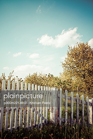Germany, white wooden fence with trees in the background - p300m2213810 by Kristian Peetz
