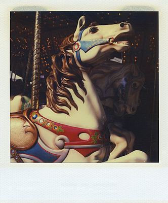 Decorative carrousel horse throwing head up  - p1154m1110206 by Tom Hogan