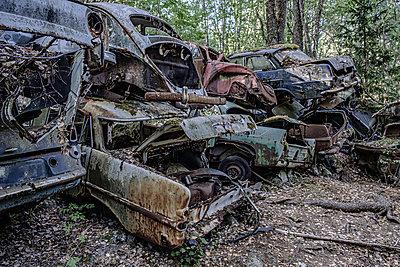 Autowracks in einem Wald, Schweden - p1463m2292950 von Wolfgang Simlinger