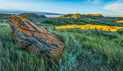A lichen covered rock with 70 Mile Butte in the distance, Grasslands National Park; Saskatchewan, Canada - p442m1449116 by Robert Postma