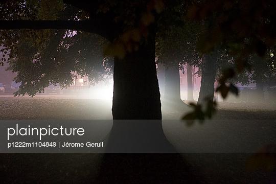 Nebellicht - p1222m1104849 von Jérome Gerull