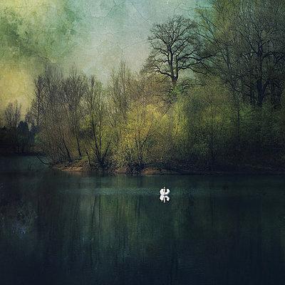 Swan Lake - p1633m2208832 by Bernd Webler