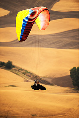 Paraglider over golden farmland; Palouse, Washington, United States of America - p442m2074112 by Its About Light