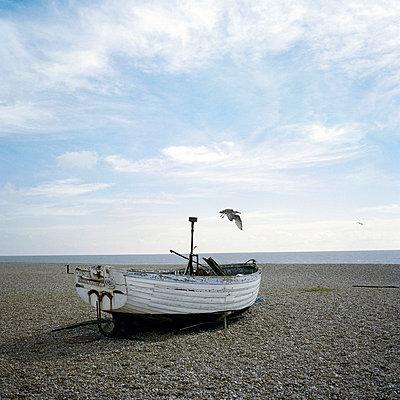 Boot mit Vogel - p627m672309 by Kirsten Nijhof