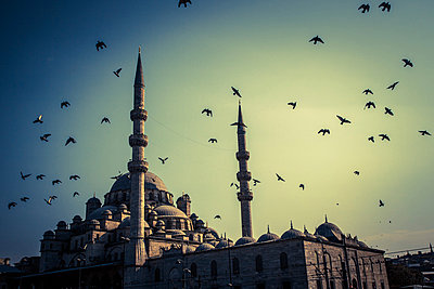 Birds over the New Mosque - p1062m871853 by Viviana Falcomer