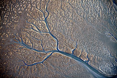 Tideways in the Wadden Sea aerial shot - p1258m1115374 by Peter Hamel