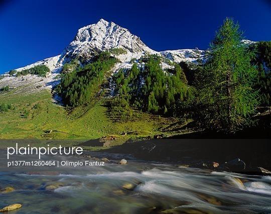 p1377m1260464 von Olimpio Fantuz