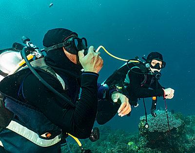 divers sharing air in emergency training in Raja Ampat / Indonesia - p1166m2279274 by Cavan Images