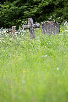 Old graveyard - p1057m1440304 by Stephen Shepherd