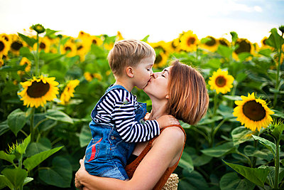 Woman holding and kiss her son amidst sunflower field - p1166m2096575 by Cavan Images