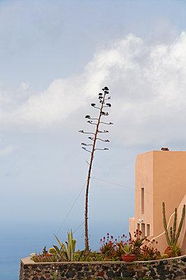 A house in Santorini Island - p1682m2260745 by Régine Heintz