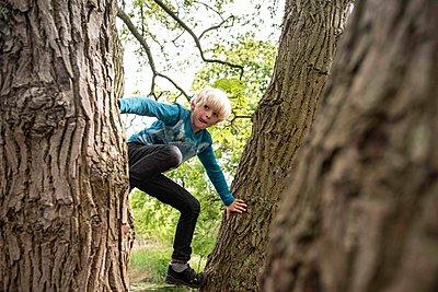 Boy climbing up a tree - p1354m2283512 by Kaiser