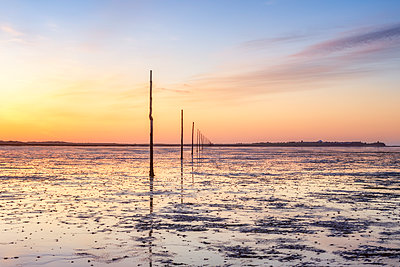 United Kindom, England, Northumberland, posts marking the pilgrims way crossing to Lindisfarne, Holy Island - p300m2081482 by Scott Masterton