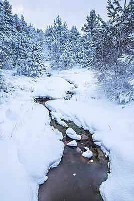 Snowy landscape at CairnGorm Mountain, Cairngorms National Park, Scotland, United Kingdom, Europe - p871m1499841 by Matthew Williams-Ellis