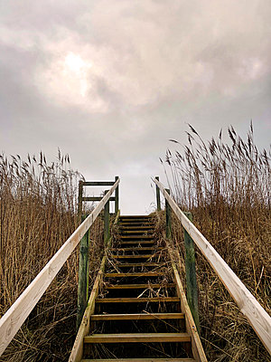 beach stairs - p382m2076290 by Anna Matzen