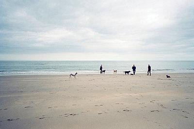 Drei Hundebesitzer am Strand - p3880489 von Allan Parker