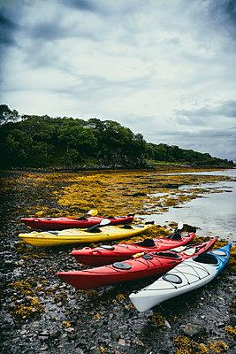 Seascape coast seaweed nobody canoes on stony beach - p609m2066447 by WALSH photography