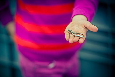 Girl holding tiny fish in the palm of her hand - p829m1110821 by Régis Domergue
