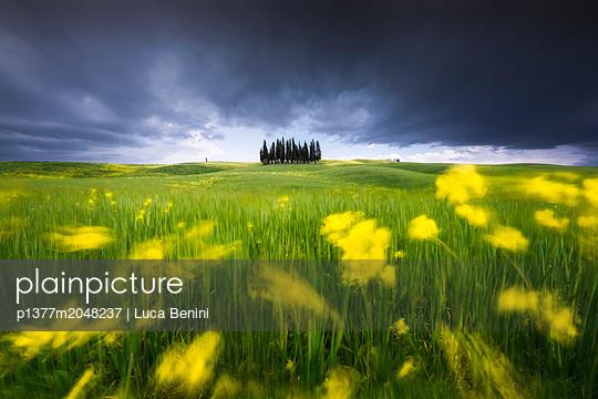 p1377m2048237 von Luca Benini