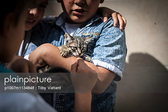 Scared kitten on children arms - p1007m1134848 by Tilby Vattard