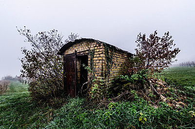 Hut in a vineyard - p1088m937951 by Martin Benner