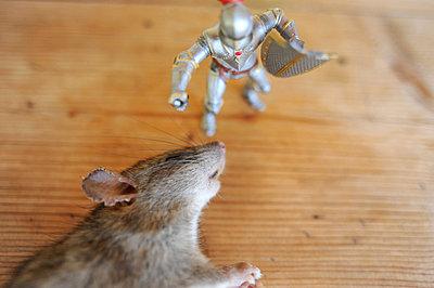 Kampf gegen die Maus - p56710585 von Ilka Kramer