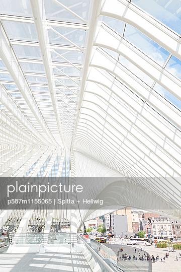 Bahnhof Liège-Guillemins in Lüttich, Dachkonstruktion - p587m1155065 von Spitta + Hellwig