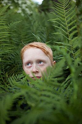 Kind im Farn - p045m1466227 von Jasmin Sander