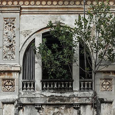 Decaying old buildings, Havana - p1624m2195967 by Gabriela Torres Ruiz