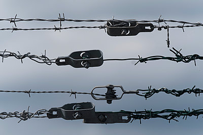 Barbed wire - p229m2278653 by Martin Langer