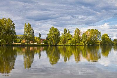 Trees reflecting in the River Dordogne - p871m838885 by Julian Elliott