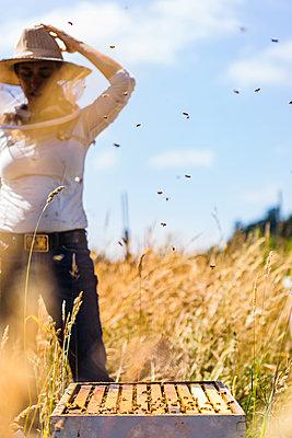 Female beekeeper adjusting hat while standing at field - p1166m1508426 by Cavan Images