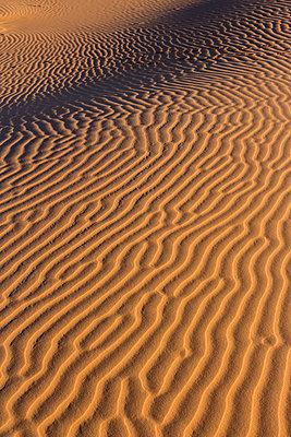 Morocco, Sahara, Erg Chebbi, pattern on desert dune - p300m1028847f by Heike Skamper