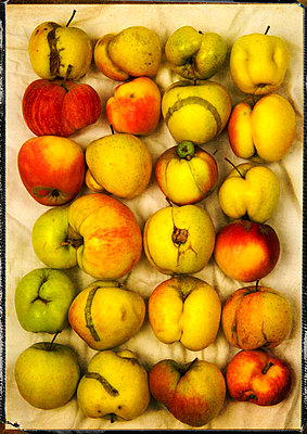 Deformed apples - p8130384 by B.Jaubert