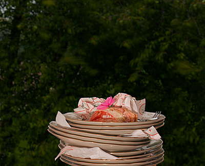 Stacked plates - p1279m1553251 by Ulrike Piringer