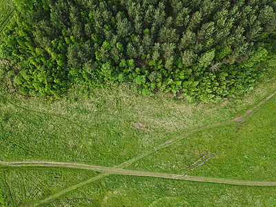 High angle view of green landscape - p1166m2112216 by Cavan Images