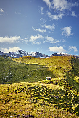 Alpine meadow against mountain range - p704m1476004 by Daniel Roos
